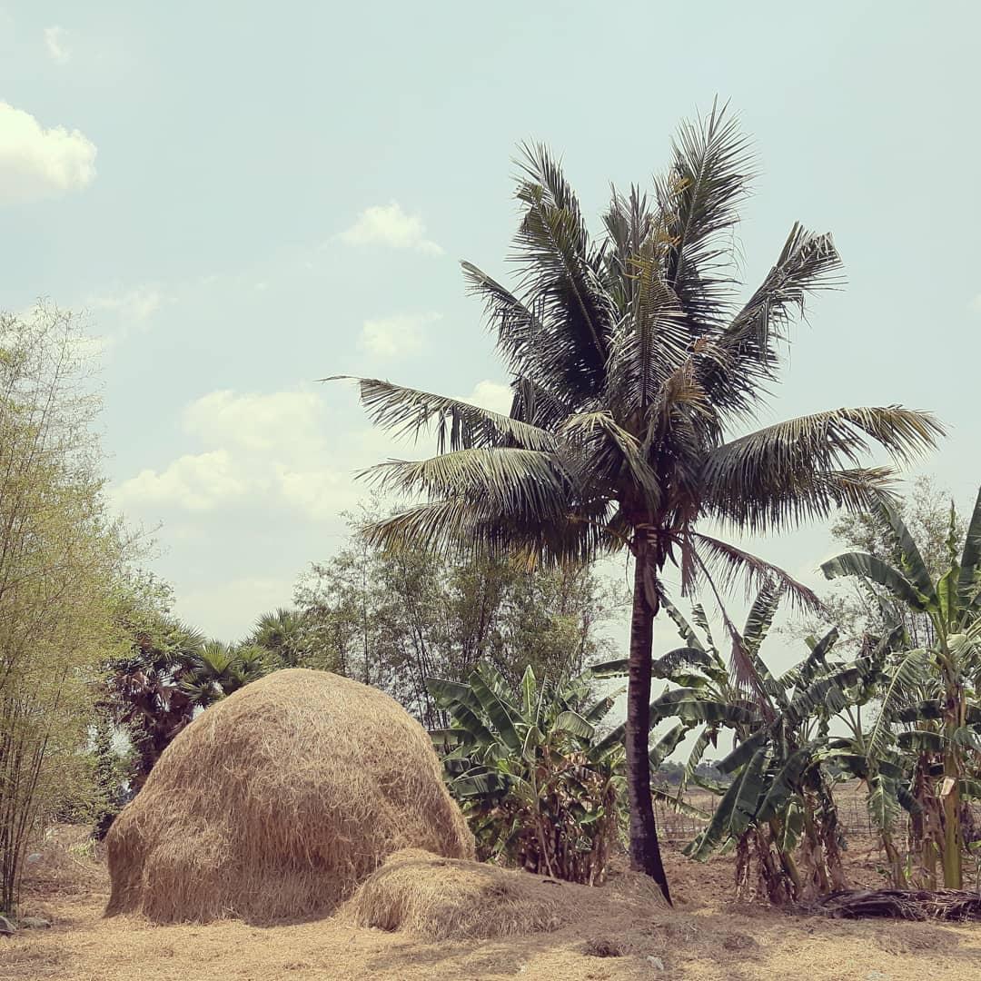 Kampong Thom Province